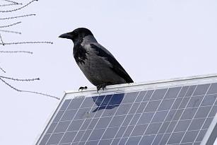 2000 dollar solar power banks